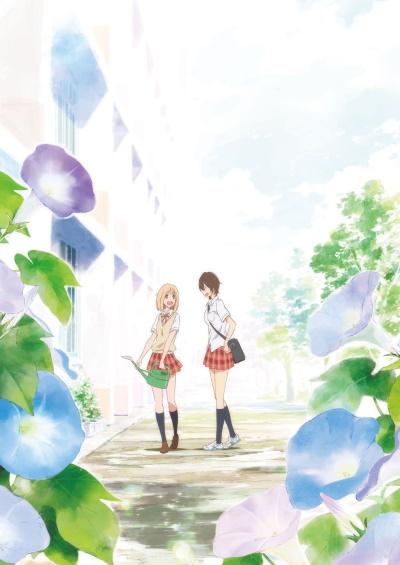 постер аниме Kimi no Hikari: Asagao to Kase-san.