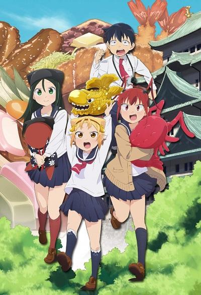 постер аниме Заметки Ятогамэ [ТВ-1]