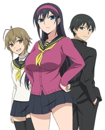 постер аниме Журнал сестры