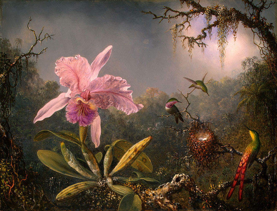 789px-Martin_Johnson_Heade-Cattleya_Orchid_and_Three_Brazilian_Hummingbirds (700x532, 138Kb) .