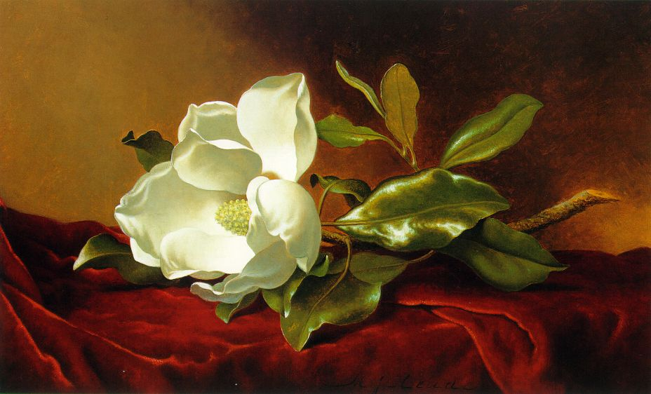 Оригинальное название a magnolia on red velvet