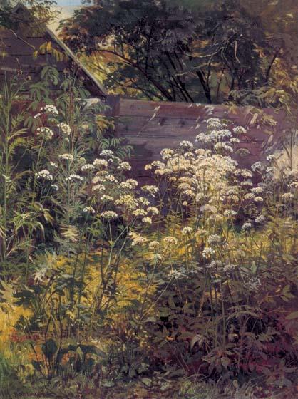 Уголок заросшего сада сныть трава 1884